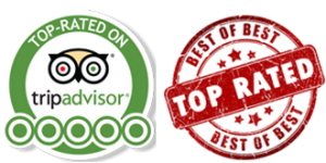 tripadvisor-stamp-top-rated